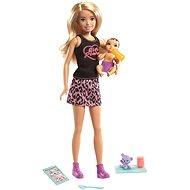 Barbie Babysitter Blonde + baby and accessories