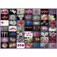 Schmidt Puzzle Kvetinový pozdrav 2000 dielikov - Puzzle