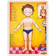 Woody Puzzle - ľudské telo - Puzzle
