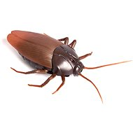Cockroach for Control - RC Model