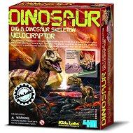 Kostra dinosaura – velociraptor