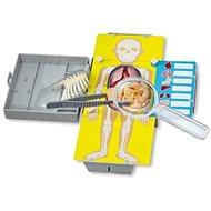Anatómia - výuková hra