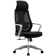 HAWAJ C9011A čierno-sivá - Kancelárska stolička