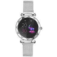 IMMAX SW12 strieborné - Smart hodinky