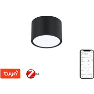 Immax NEO RONDATE Smart stropné svietidlo 15 cm 12 W čierne Zigbee 3.0