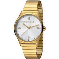 ESPRIT VinRose Silver Gold Matt 2990 - Dámske hodinky