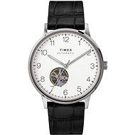 TIMEX WATERBURY TW2U115007U - Pánske hodinky