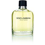 DOLCE & GABBANA Pour Homme EdT 125 ml - Pánska toaletná voda