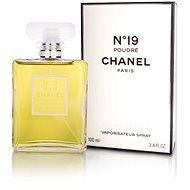 CHANEL No.19 Poudre EdP 100 ml - Parfumovaná voda