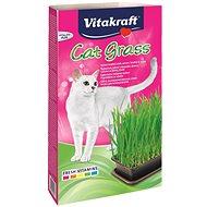 Maškrty pre mačky Vitakraft Cat Gras tráva 120 g