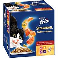 Felix Sensations Jellies (24× 100 g) – výber v och. želé - Kapsička pre mačky