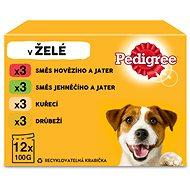 Kapsička pre psov Pedigree Vital protection v želé Adult 12× 100 g