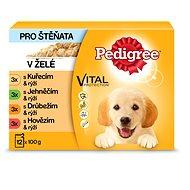 Pedigree Junior výber v šťave 12× 100g - Kapsička pre psov