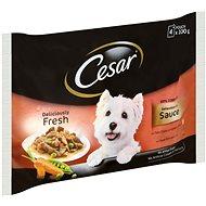 Kapsička pre psov Cesar Selection v omáčke 4× 100 g