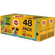 Pedigree Vital Protection mäsový výber so zeleninou na šťave 48× 100 g - Kapsička pre psov