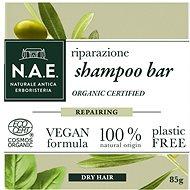 N.A.E. Riparazione 85 g - Tuhý šampón