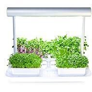 Microgreens by Leaf Learn Mini - Inteligentný kvetináč