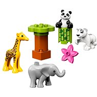 LEGO DUPLO Town 10904 Zvieracie mláďatká - LEGO stavebnica