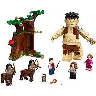 LEGO Harry Potter TM 75967 Zakázaný les: Stretnutie Grawpa a profesorky Umbridgeovej - LEGO stavebnica