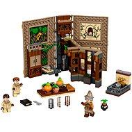 LEGO Harry Potter TM 76384 Kúzelné momenty z Rokfortu: Hodina bylinkárstva
