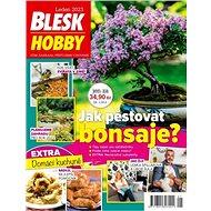 Blesk Hobby - Elektronický časopis