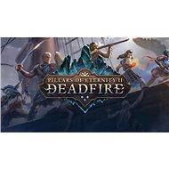 Pillars of Eternity II: Deadfire – Obsidian Edition (PC) DIGITAL - Hra na PC