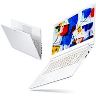 Acer ConceptD 5 - Notebook