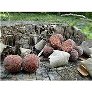 Mastodont Baits – Boilie Worms 1 kg - Boilies