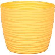 Obal na květník SAHARA PRIMULE plastový žlutý d11x9cm - Príslušenstvo