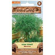 Kôpor voňavý MORAVAN - Semená