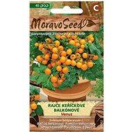 Semená Rajčiak kríčkový balkónový VENUS, oranžový