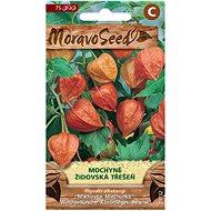Semená Machovka – Židovská čerešňa, oranžová
