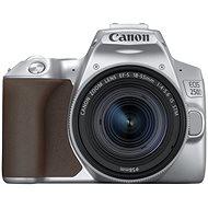 Canon EOS 250D strieborný + 18–55 mm IS STM - Digitálny fotoaparát