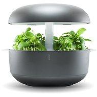 Plantui 6 Smart Garden, sivá - Kvetináč
