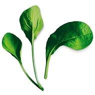 Plantui Pok Choy Red - Kapsuly