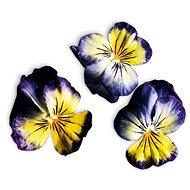 Plantui Viola Lemon Blueberry - Kapsuly