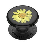 Držiak na mobil PopSockets PopGrip Gen.2, Pressed Flower Yellow Daisy, žltý kvietok zaliaty v živici