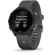 Smart hodinky Garmin Forerunner 245 Grey