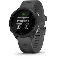 Garmin Forerunner 245 Grey