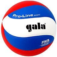 Gala Pro Line BV5591S - Volejbalka