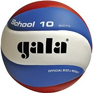 Gala School BV5711S - Volejbalová lopta