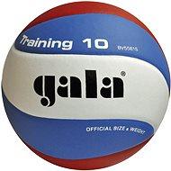 Gala Training BV5561S - Volejbalka