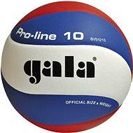 Gala Pro Line BV5121S - Volejbalka