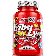 Amix Nutrition Tribulyn 90 %, 90 kapsúl - Anabolizér