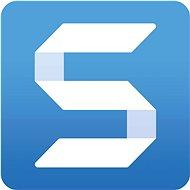 SnagIt 2021, vrátane podpory na 12 mesiacov (elektronická licencia) - Kancelársky softvér