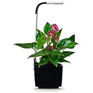 TREGREN T3 Kitchen Garden, čierny - šikovný kvetináč