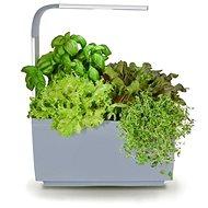 TREGREN T3 Kitchen Garden, sivý - Inteligentný kvetináč