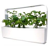 TREGREN T12 Kitchen Garden, biely - Inteligentný kvetináč