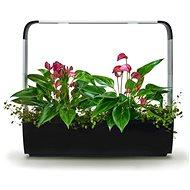 TREGREN T12 Kitchen Garden, čierny - Inteligentný kvetináč