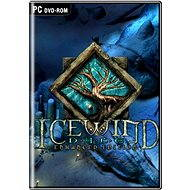 Icewind Dale Enhanced Edition - Hra pre PC